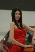 2009上海车展奇瑞车模