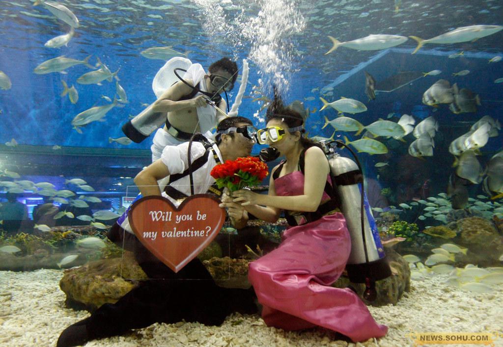 壁纸 海底 海底世界 海洋馆 水族馆 1024_707