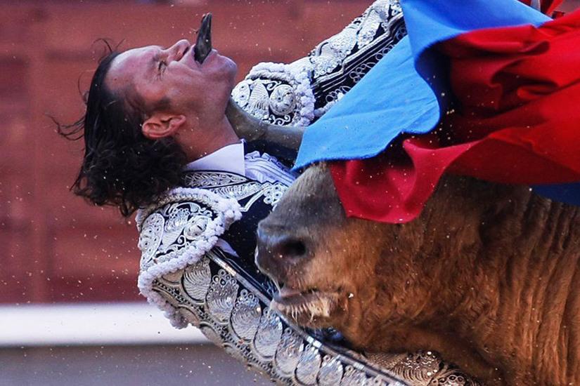 转贴 -牛士被刺穿咽喉 - 山水号子 - 山  水  号  子