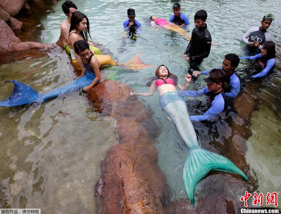"""菲律宾开""""美人鱼""""游泳课图片"""