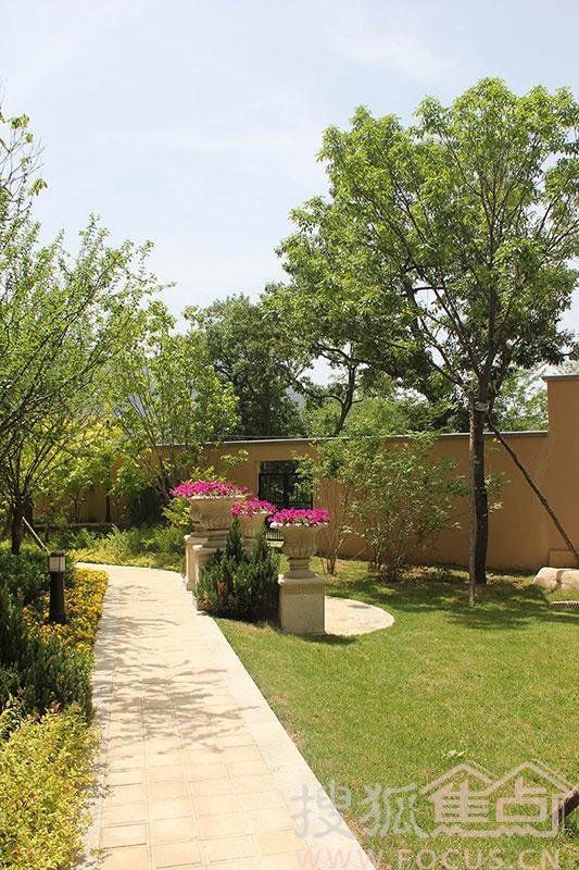 实拍橡树庄园独栋别墅庭院景观