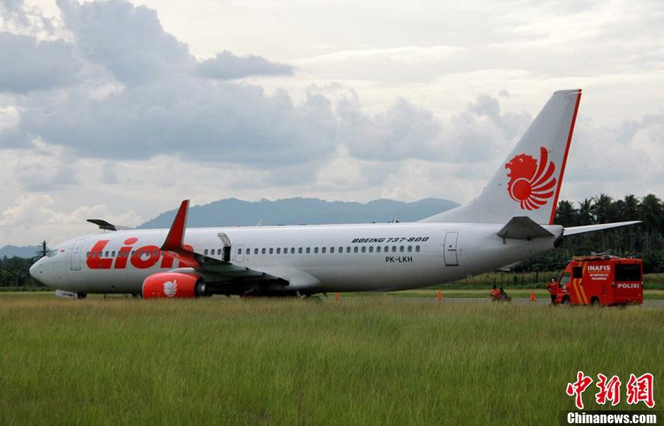 印尼一飞机着陆时撞到牛滑出跑道