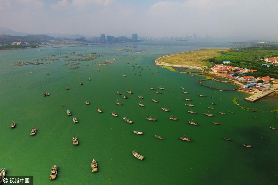 山东青岛市风景图片