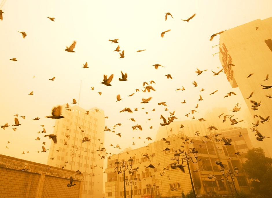 世界人口70亿之:环境影响 - Llq·Mlq·梦 - 梦幻人生家园