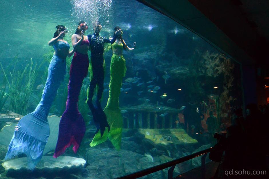 青岛海底世界推出海底情景剧 系国际首创(组图)