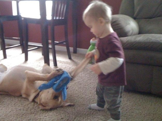 呆萌奶娃与宠物狗的相伴时光
