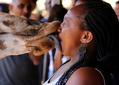 """肯尼亚长颈鹿""""强吻""""游客:伸长舌头舔嘴"""