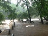 """受第十号台风""""麦德姆""""影响,崂山北九水景区水位暴涨,峡谷之中山洪奔腾。为了保障游客安全,景区..."""
