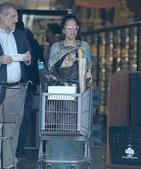 搜狐娱乐讯 当地时间11月30日,Lady Gaga着仙女裙逛超市买面包,造型醉人,好似刚刚从唐朝穿...