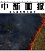 亚马逊森林保卫战