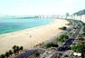 巴西世界杯十二城:热带多旖旎 如画看桑巴(图)