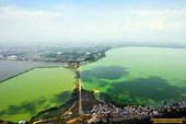 昆明滇池绿如漆