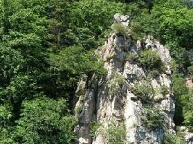 龙湾自然保护区